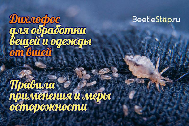Дихлофос от вшей и гнид - можно ли вывести паразитов этим средством