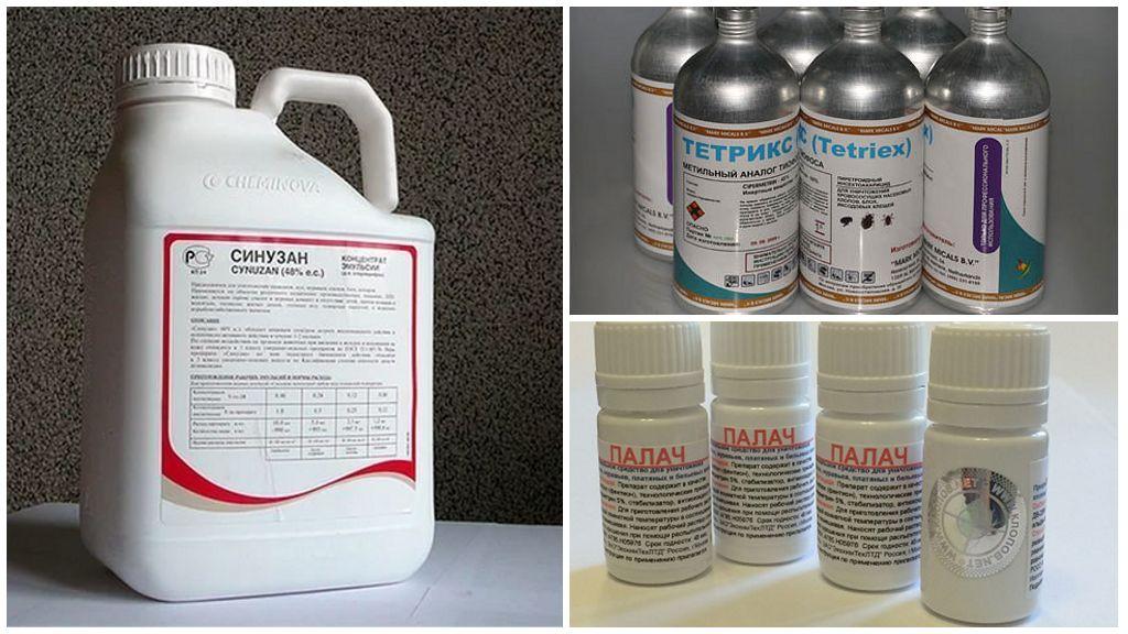 Инсектициды. «химия» против вредителей на дачном участке