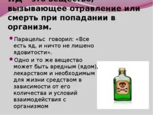 Крысиный яд: отравление и смертельная доза для человека