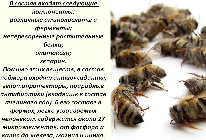 Пчелиный яд: действие на организм, польза и вред, купить