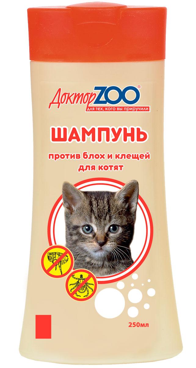 Шампунь от блох для кошек и котят: рекомендации по выбору