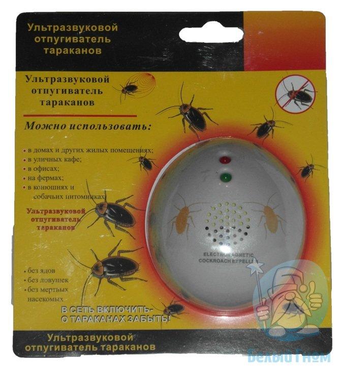 Чего боятся тараканы в квартире, какие запахи не любят и что их отпугивает