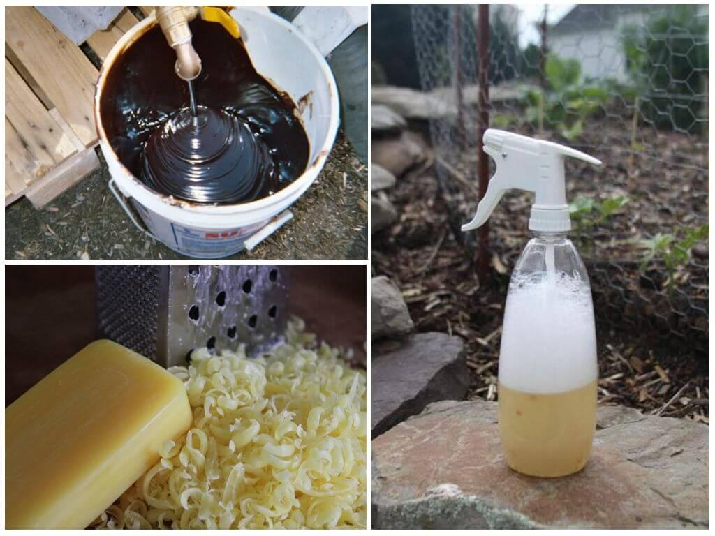 Как приготовить мыльный раствор против тли. настой золы