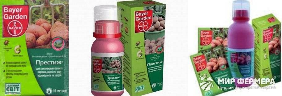 Престиж от колорадского жука: действие средства, инструкция по применению - ваш огородик