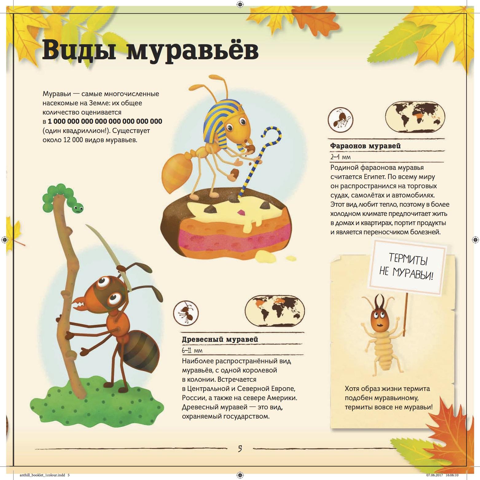 Удивительные факты о муравьях