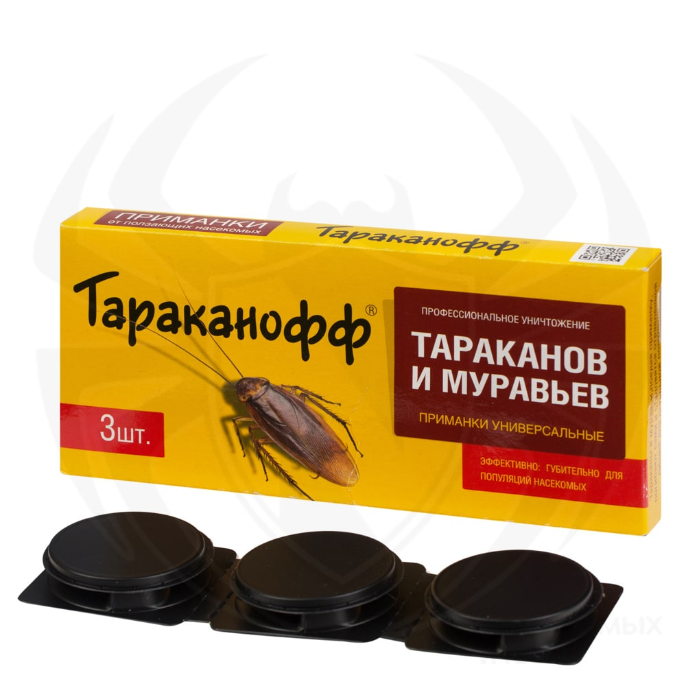 Ловушки для тараканов: способ применения и принцип действия