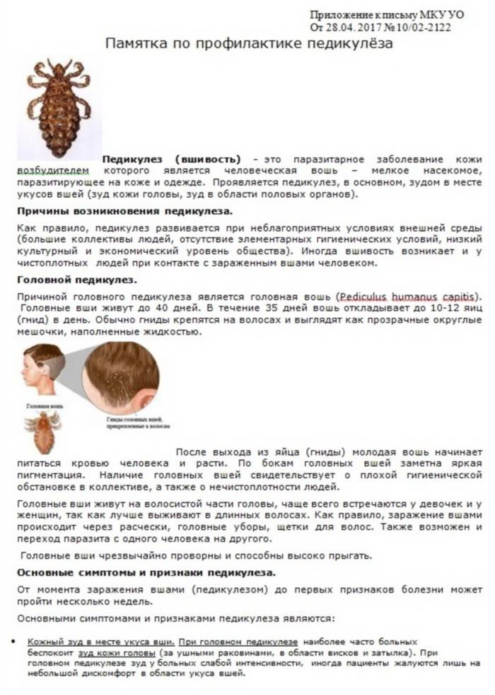 Лечение педикулеза или как избавиться от вшей