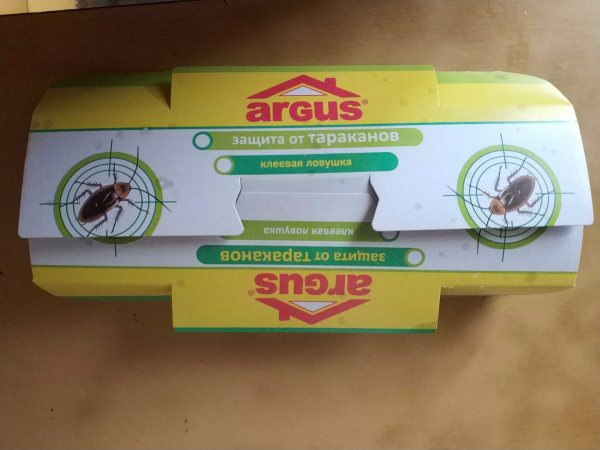 Какие ловушки от тараканов самые эффективные
