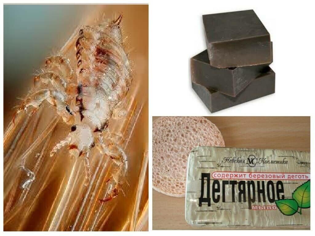 Целесообразность использования дегтярного мыла от блох