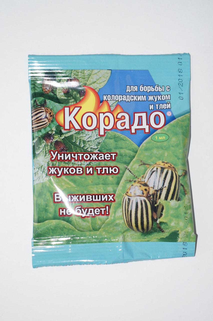 Корадо от колорадского жука: инструкция по применению, состав и свойства, форма выпуска, правила применения