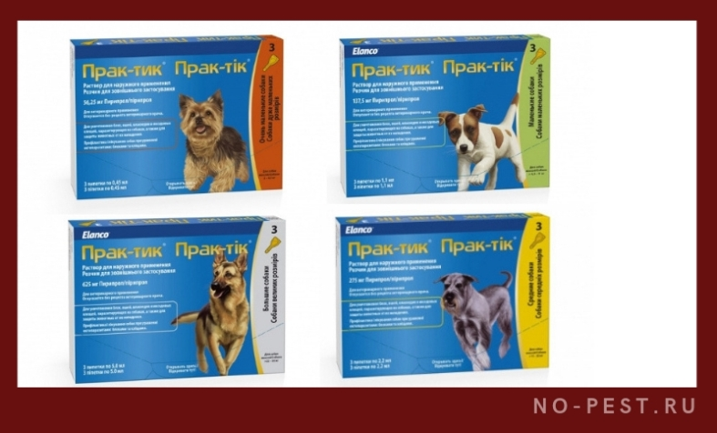 Капли практик для собак от блох и клещей – инструкция по применению, отзывы