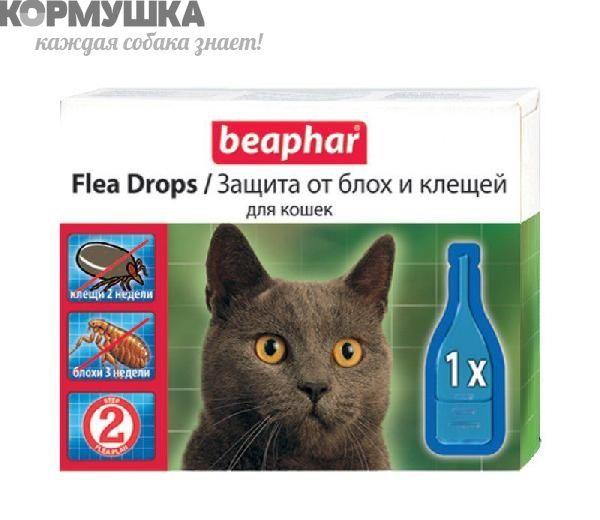 Капли от блох и клещей для кошек: куда капать, как часто, как наносить, как действуют, сколько, что расскажет инструкция, побочные явления