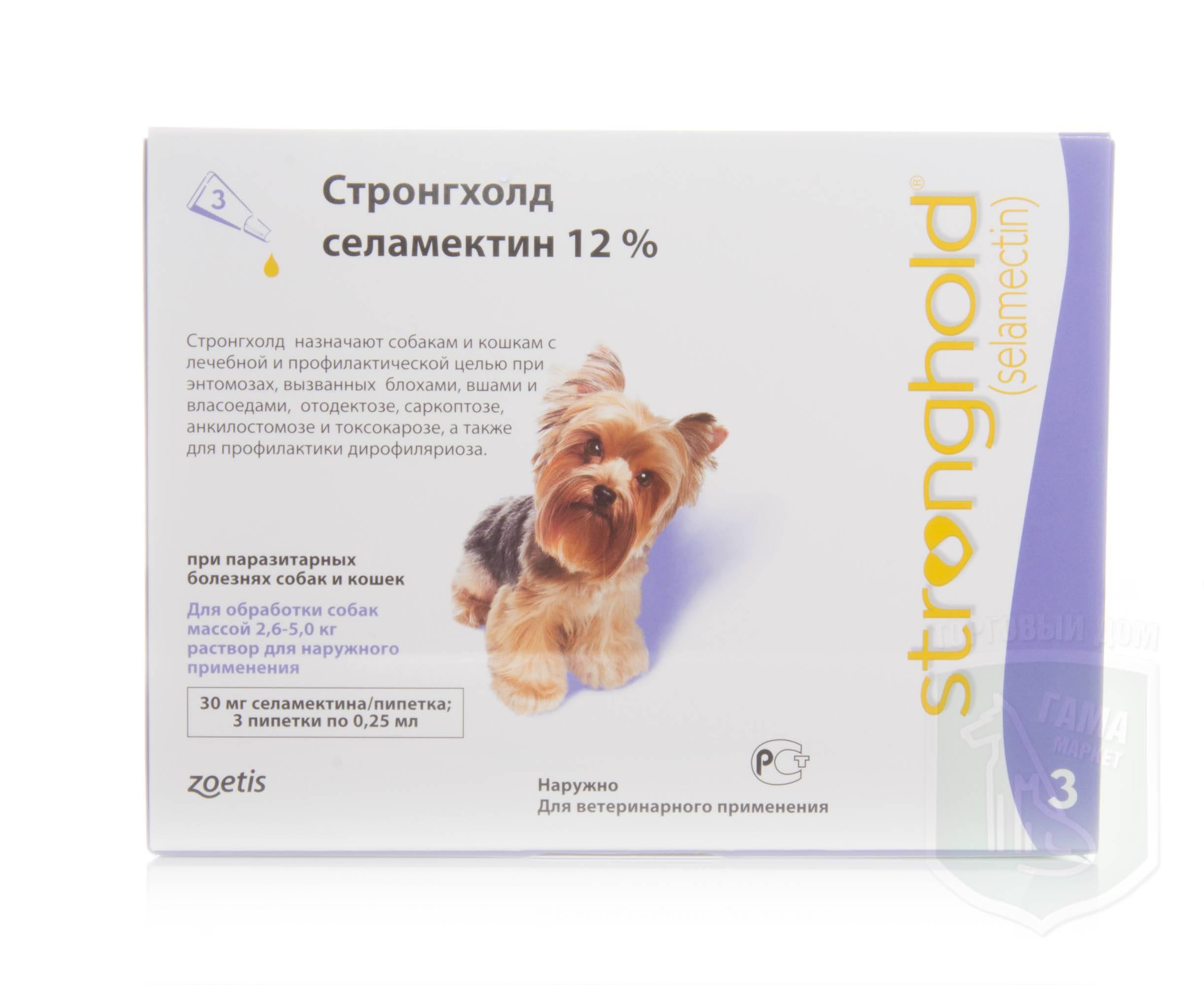 Стронгхолд для собак: инструкция по применению, цена, отзывы