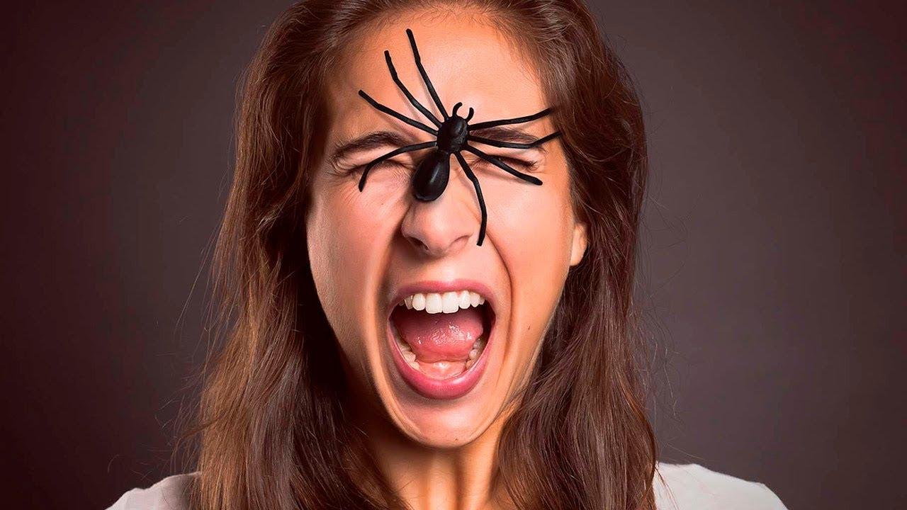 Арахнофобия - боязнь пауков - как избавиться от фобии