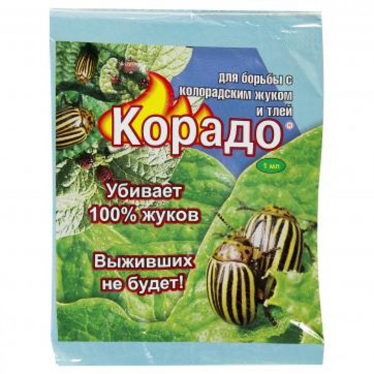 Применение препарата корадо от колорадского жука - мыдачники