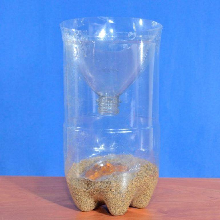 Мышеловка из стеклянной бутылки. мышеловка своими руками: проверенные способы изготовления.