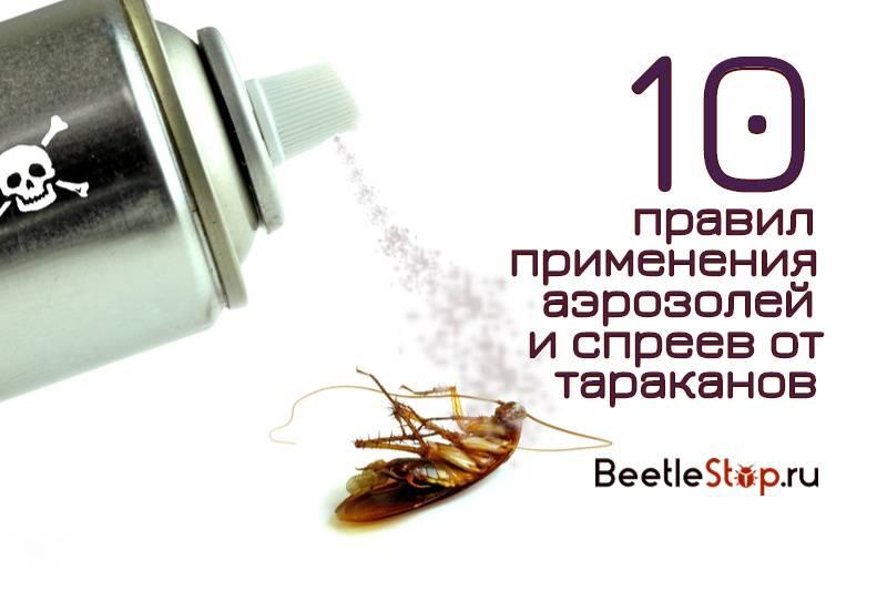16 лучших средств от тараканов - рейтинг 2021 года (топ на январь)