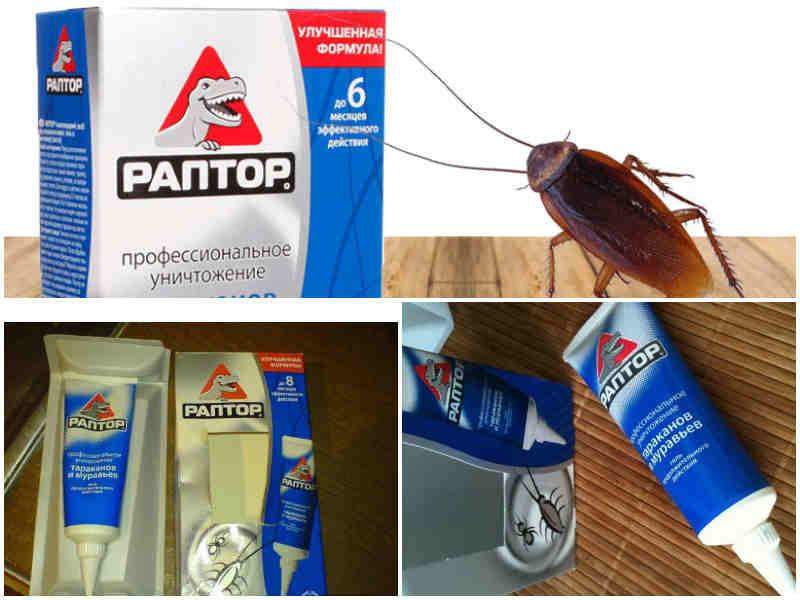 Аэрозоль раптор от ползающих насекомых: инструкция, советы по использованию