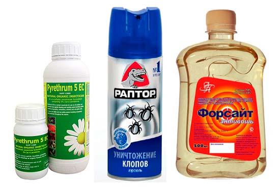 Пиретрум от клопов – свойства препарата и отзывы