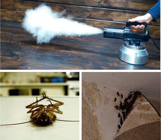 Что такое холодный и горячий туман от клопов и тараканов?
