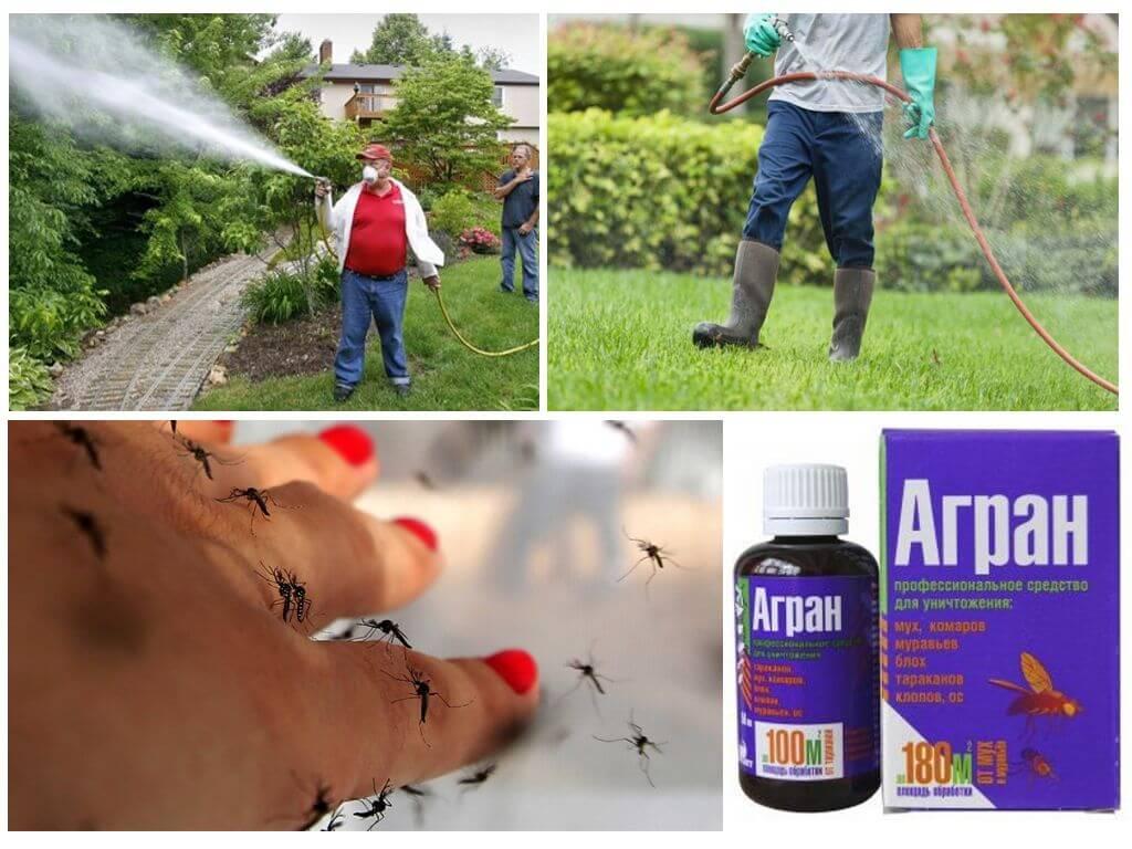 Инструкция по применению инсектицида «агран» в борьбе с тараканами и клопами