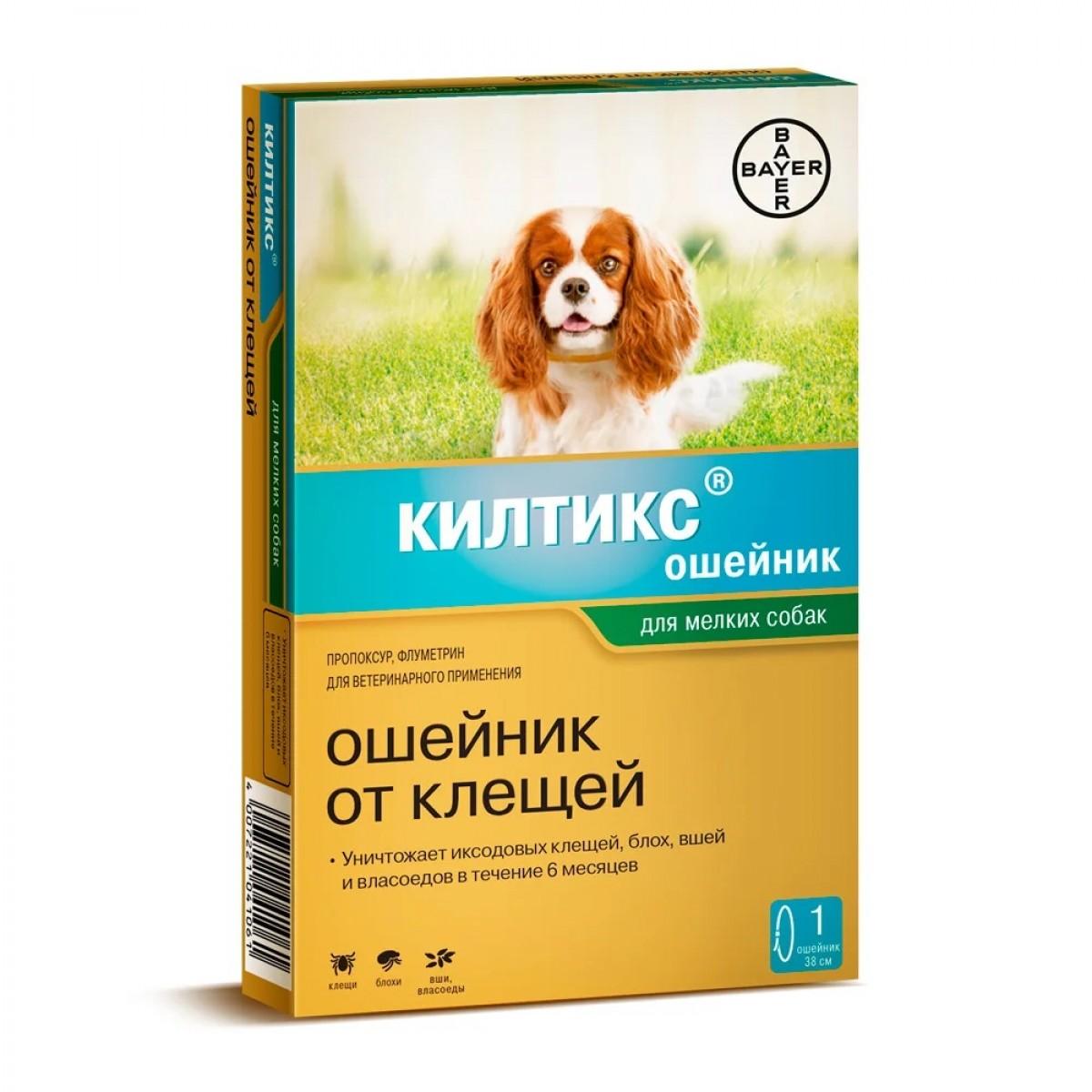 Как выбрать собаке хороший ошейник от блох и клещей