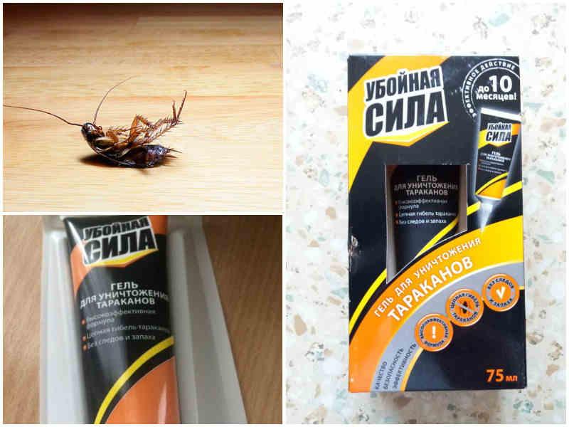 Убойная сила гель от тараканов — действие, эффективность, инструкция, меры безопасности, отзывы