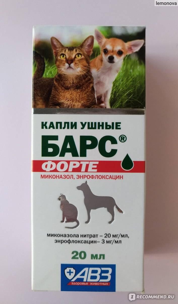 Cредство от блох барс для кошек и собак — инструкция по применению