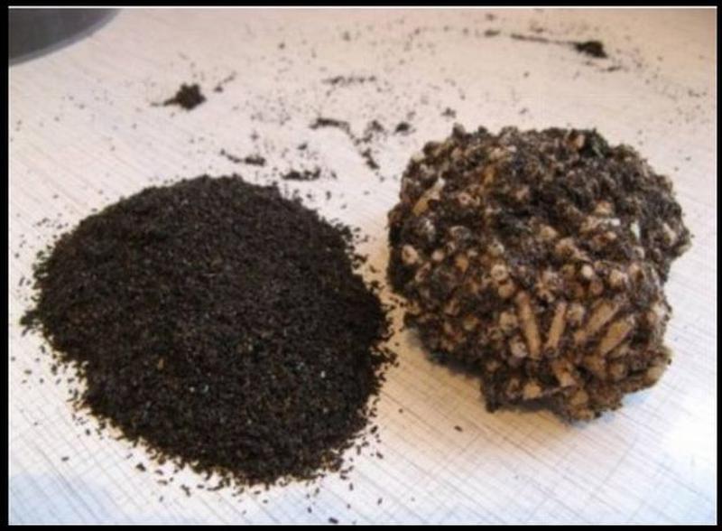 Лечение экскрементами восковой моли: использование пжвм