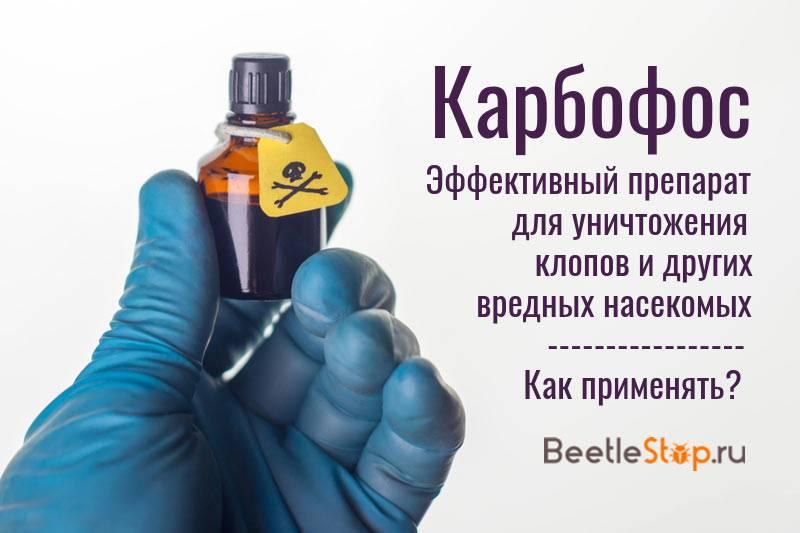 Средство карбофос от клопов: плюсы и минусы, цена и инструкция по применению русский фермер