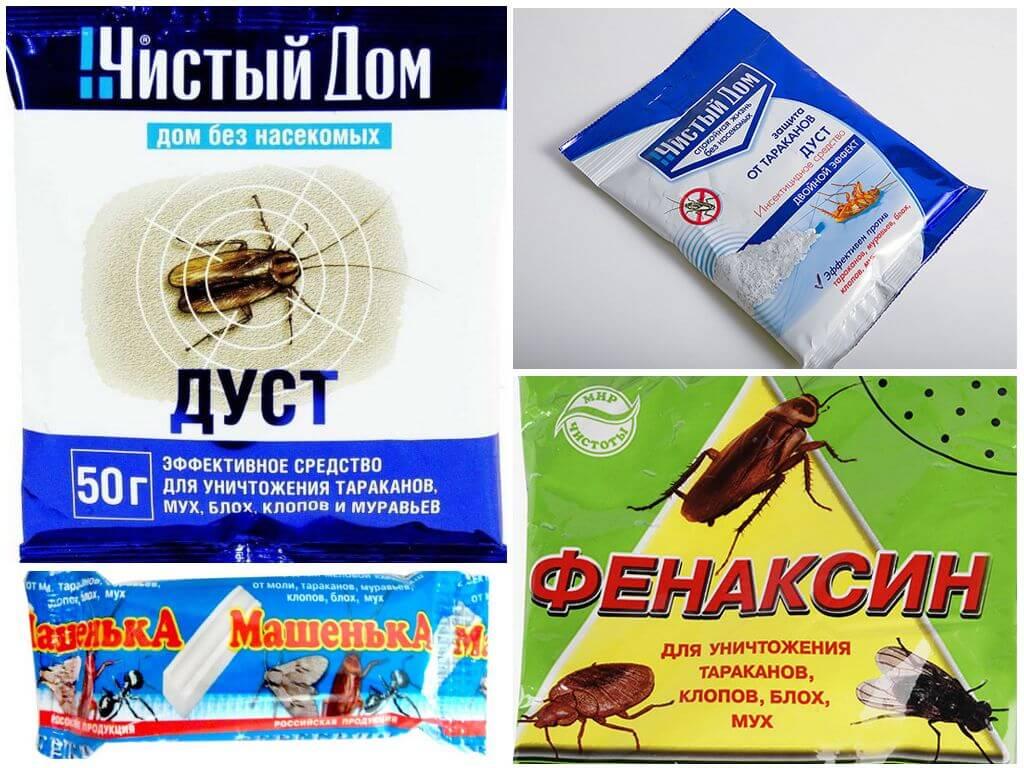 Виды инсектицидов - препаратов для защиты растений, используемых в рамках борьбы с насекомыми