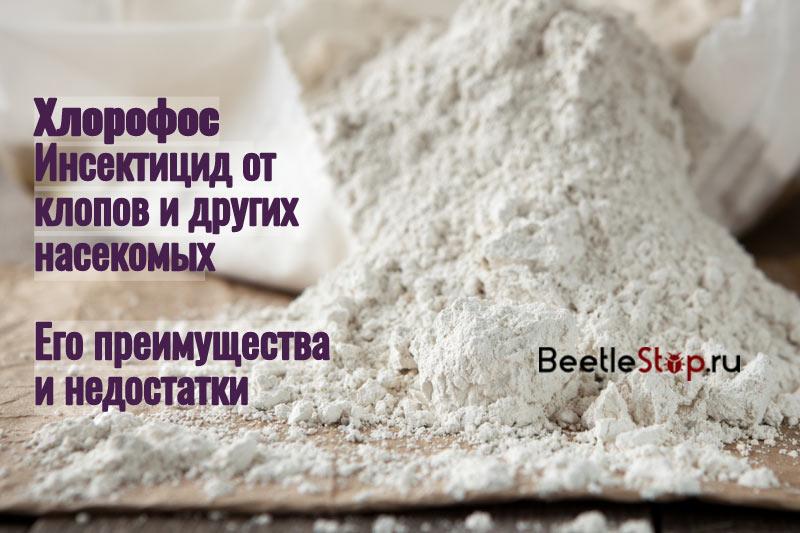 Хлорпирифос от клопов — nasekomie