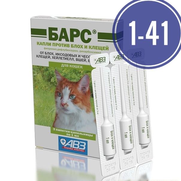 Лучшие и эффективные средства от блох для кошек: описание и правила использования самых популярных
