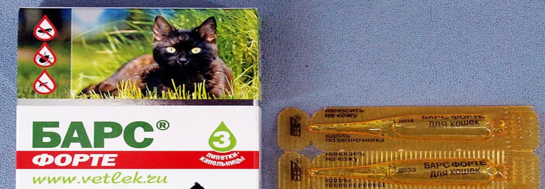 Лучшие капли от блох для кошек: топ-5 препаратов и их использование