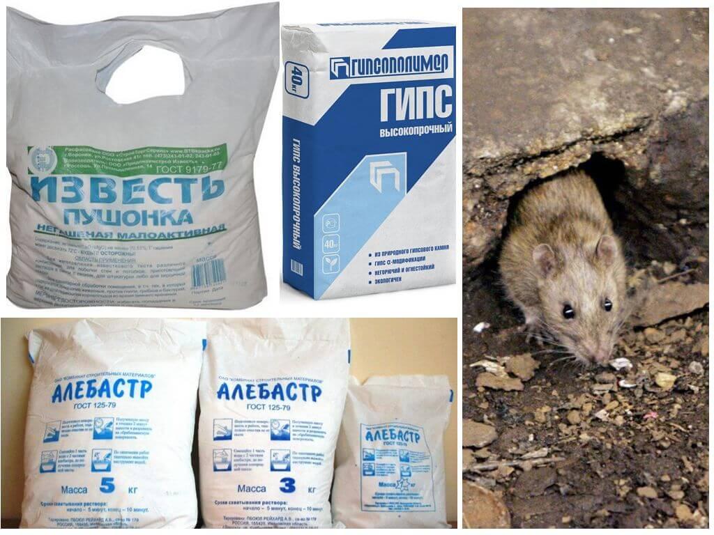 Отрава для мышей и крыс мумифицирующая — что это такое и как действует