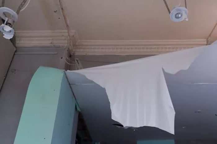 Могут ли мыши лазить по потолку
