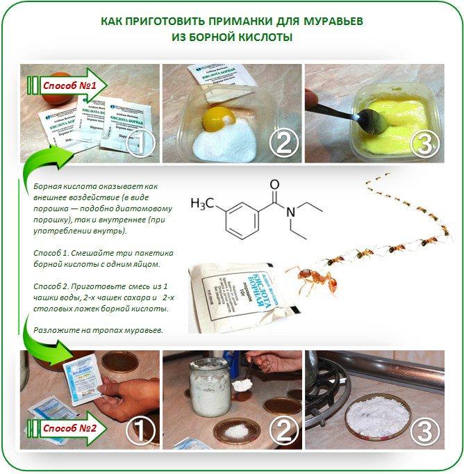 Борьба с тараканами с помощью борной кислоты