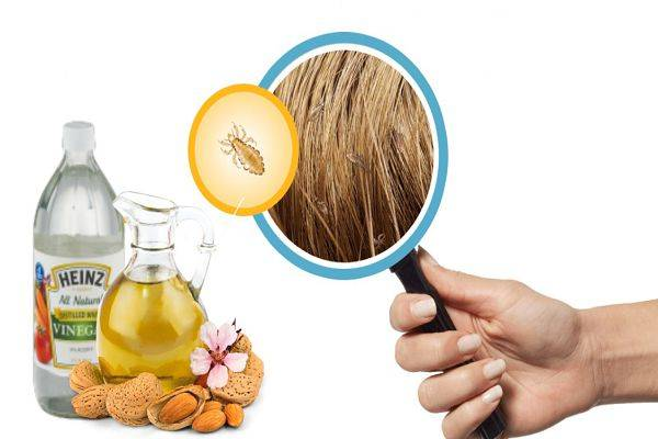 Уксус от вшей и гнид рецепт и применение в домашних условиях