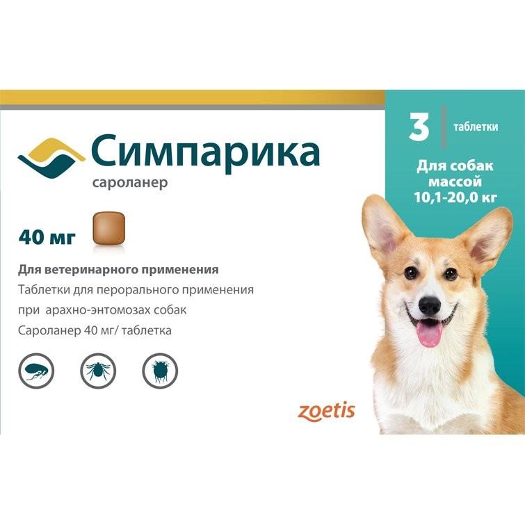 Что лучше — «бравекто», «симпарика» или «нексгард»: мнения ветеринаров и отзывы собаководов