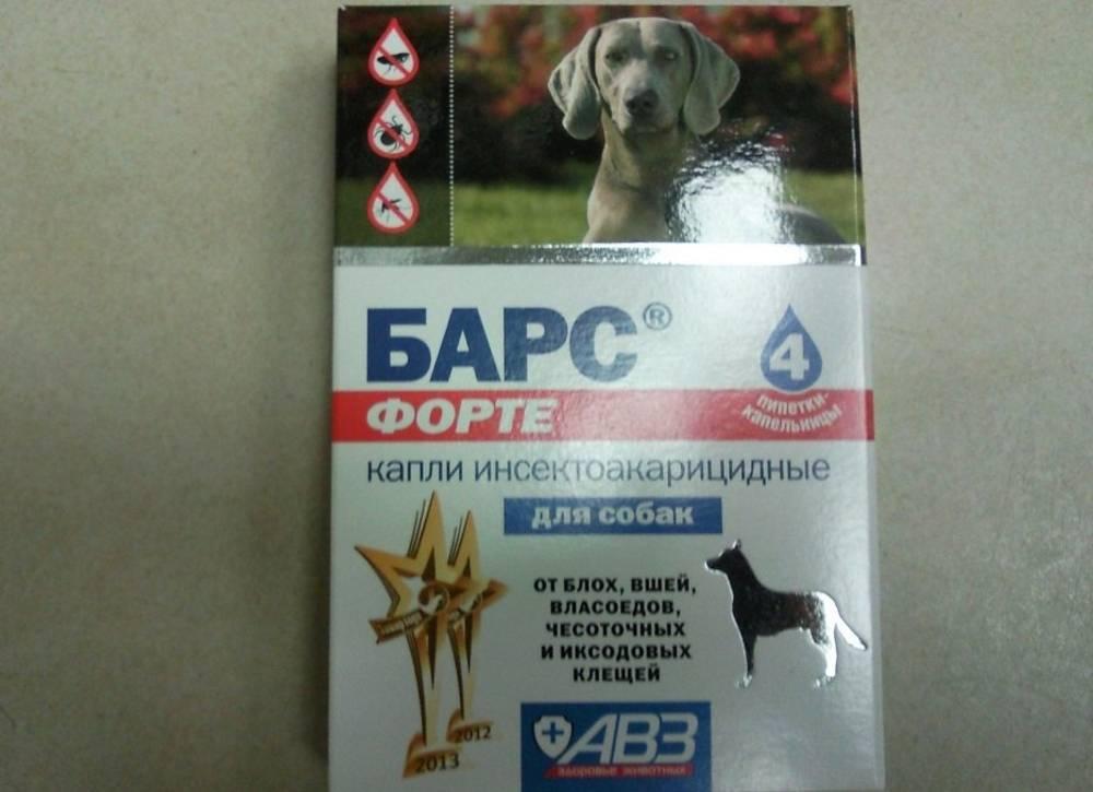 Капли барс для собак: инструкция по применению, цена, отзывы