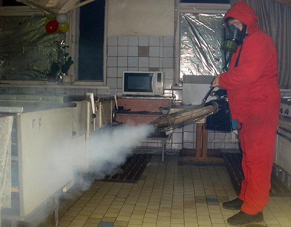Холодный туман от тараканов: описание, подготовка и обработка
