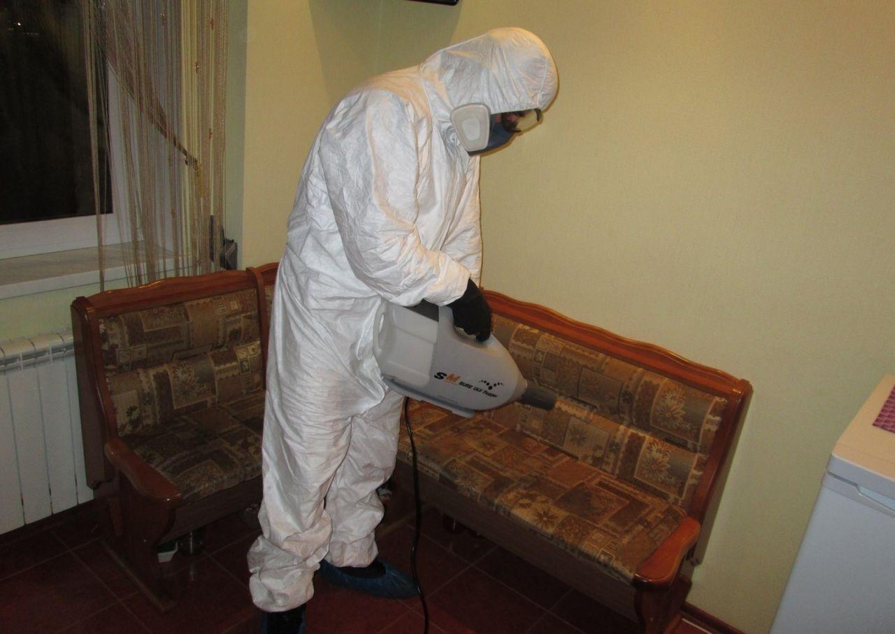 Как происходит уничтожение тараканов в квартире сотрудниками сэс