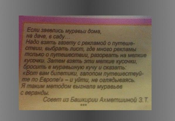 Заговоры и молитвы от клопов в квартире: ритуалы и обряды, помощь сибирской целительницы