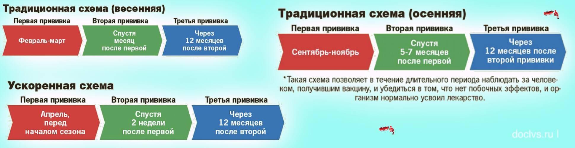 Прививка от клещевого энцефалита - цены в клинике семейный доктор, москва.