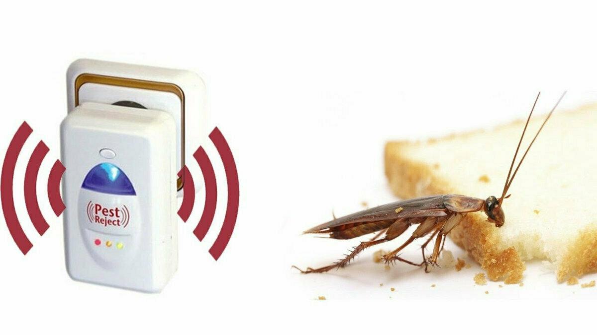 Электронный отпугиватель насекомых и грызунов pest reject, отзывы