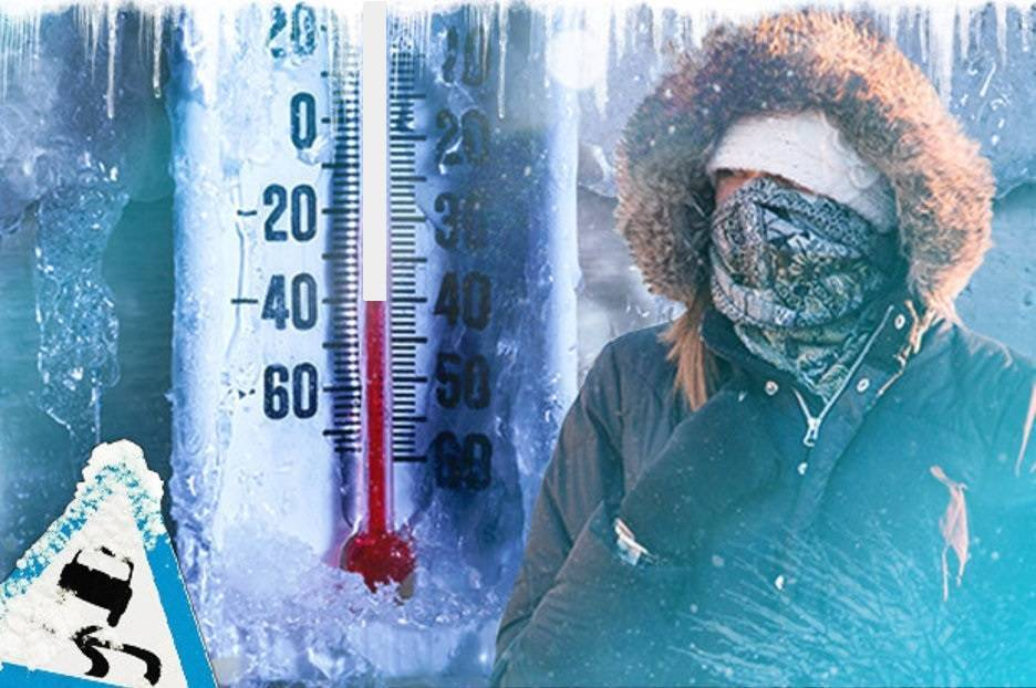 Губительная температура: при какой отметке термометра умирают тараканы?