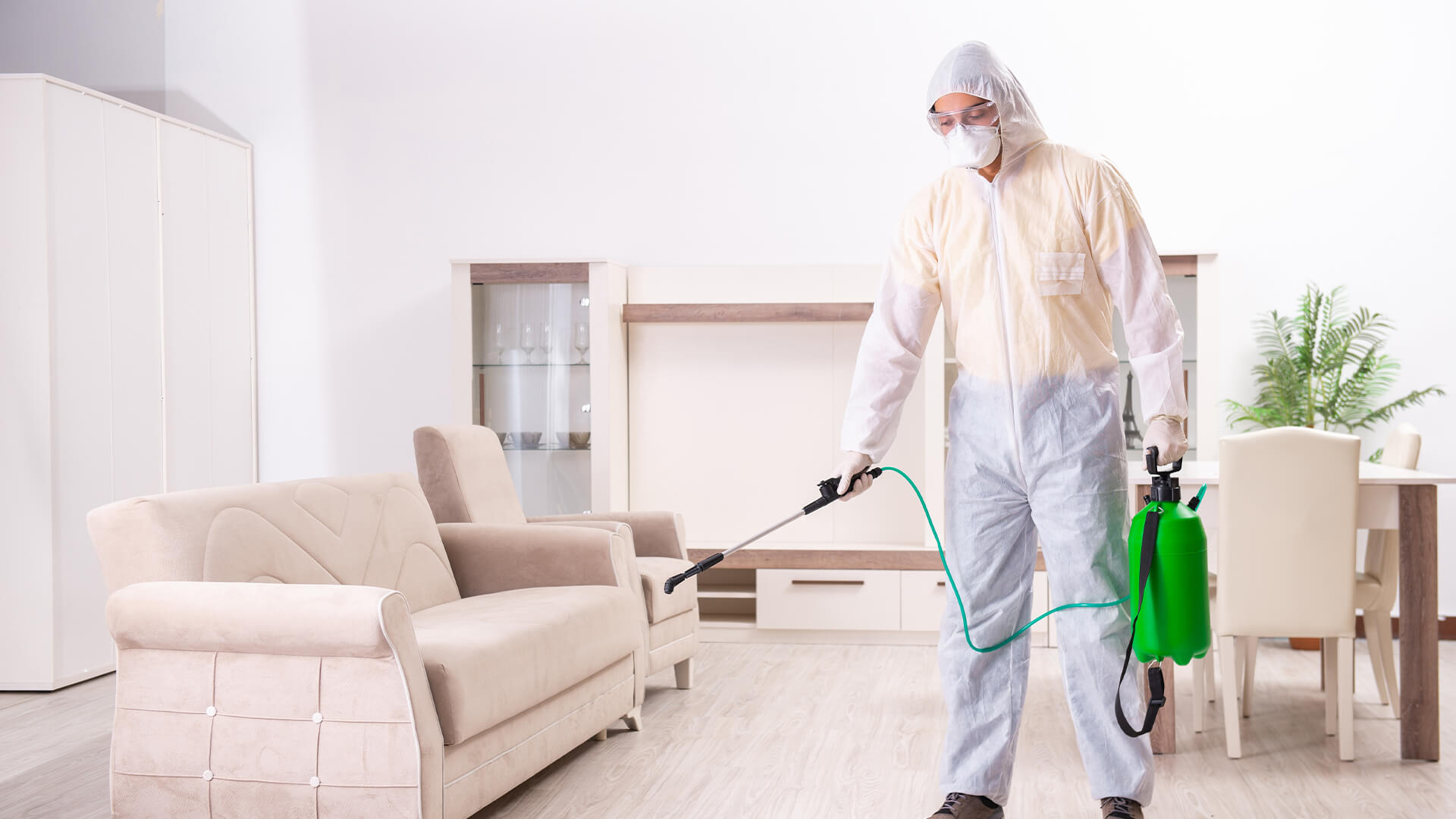 Уничтожение клопов в квартире – лучшие способы обработки