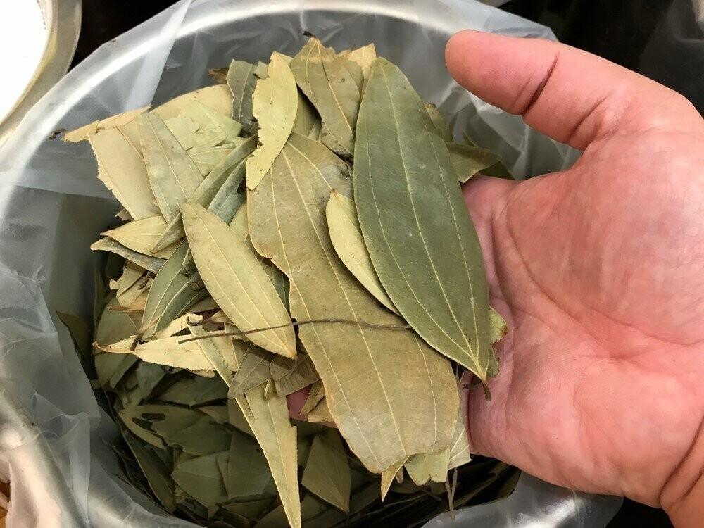 Боятся ли тараканы лаврового листа и как его использовать для борьбы с ними?