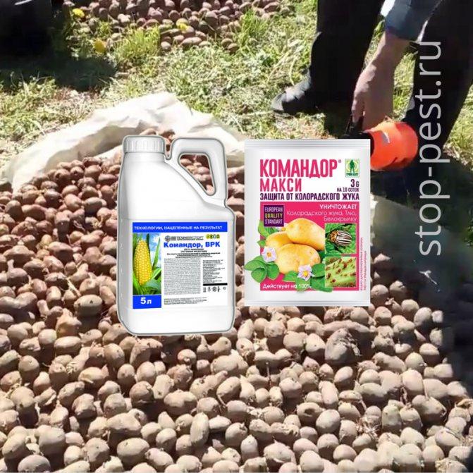 Командор - инструкция по применению для картофеля, отзывы