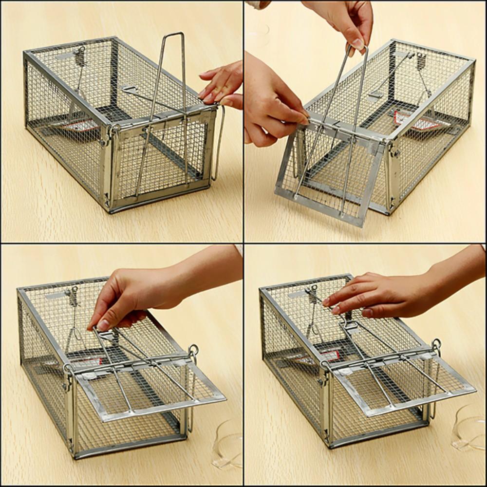 Ловушка для крыс: обзор лучших ловушек на рынке и способы самостоятельного изготовления